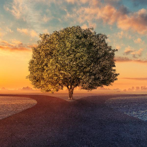 Dos caminos posibles, un desenlace incierto